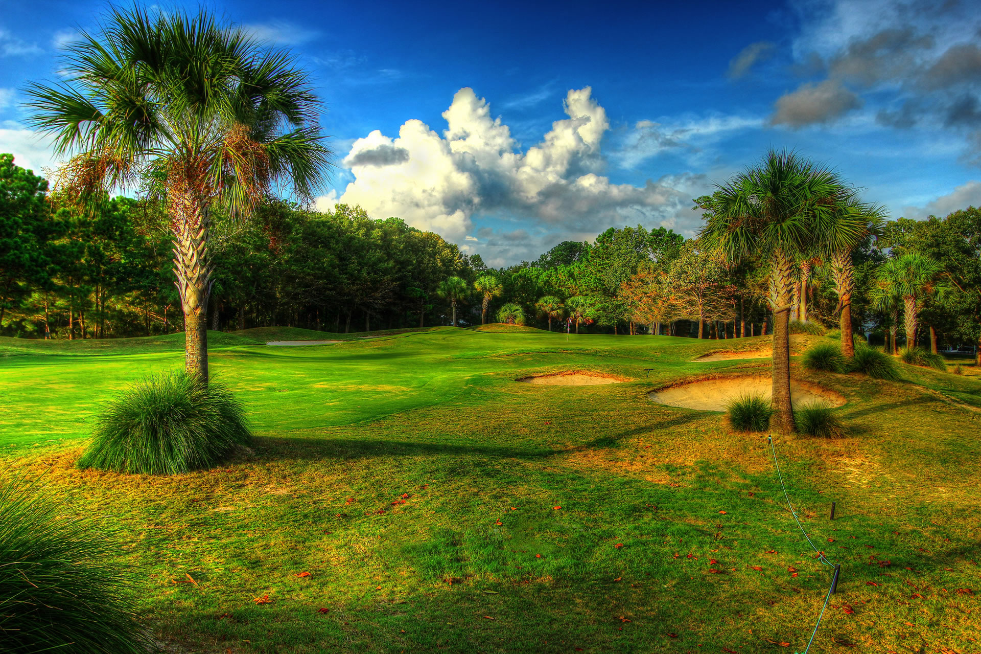 Charleston National hole 11