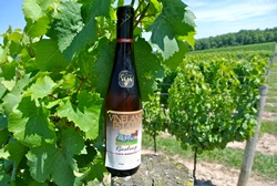 WS - vineland riesling